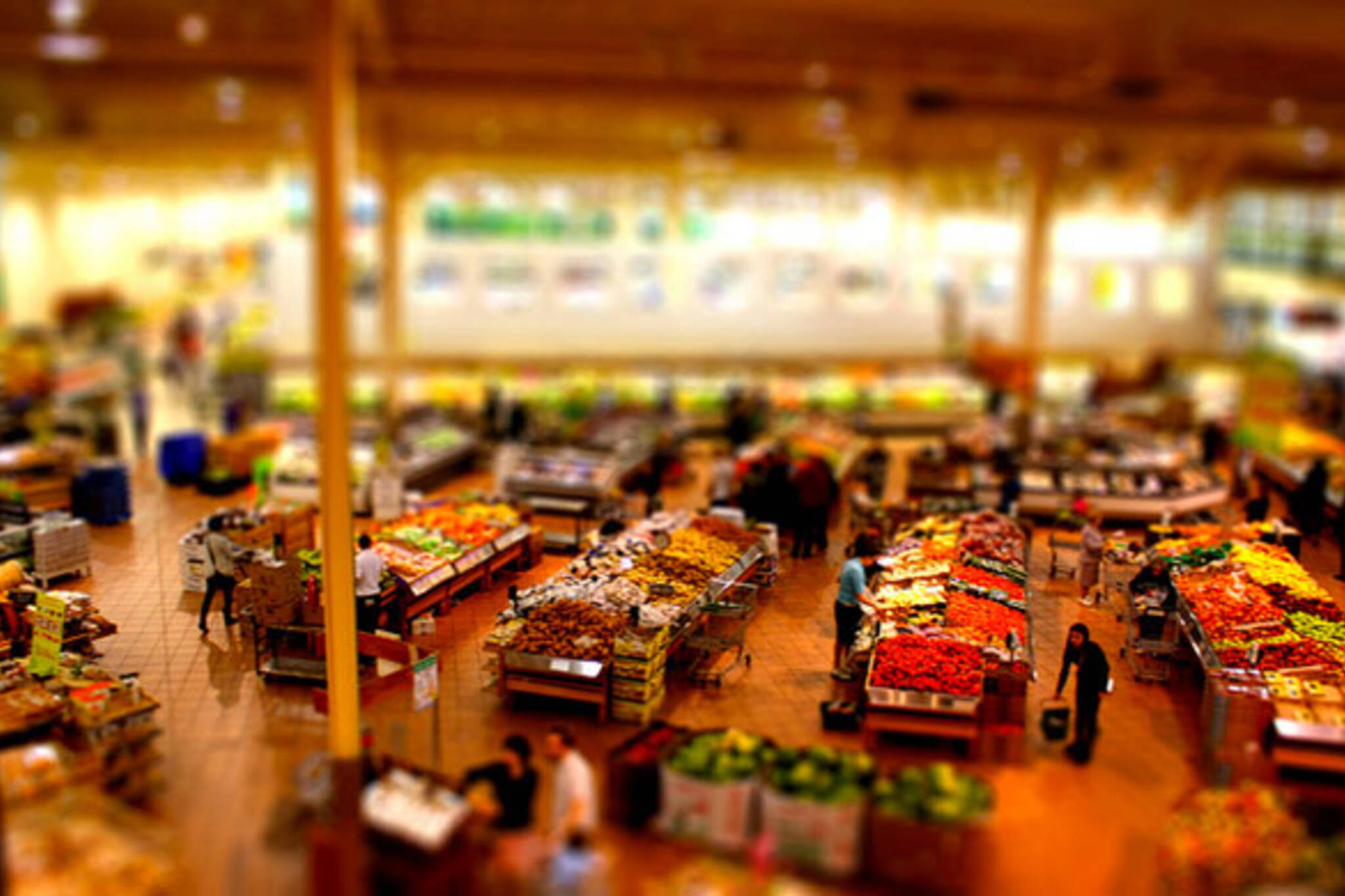 Grocery Shopping in Toronto