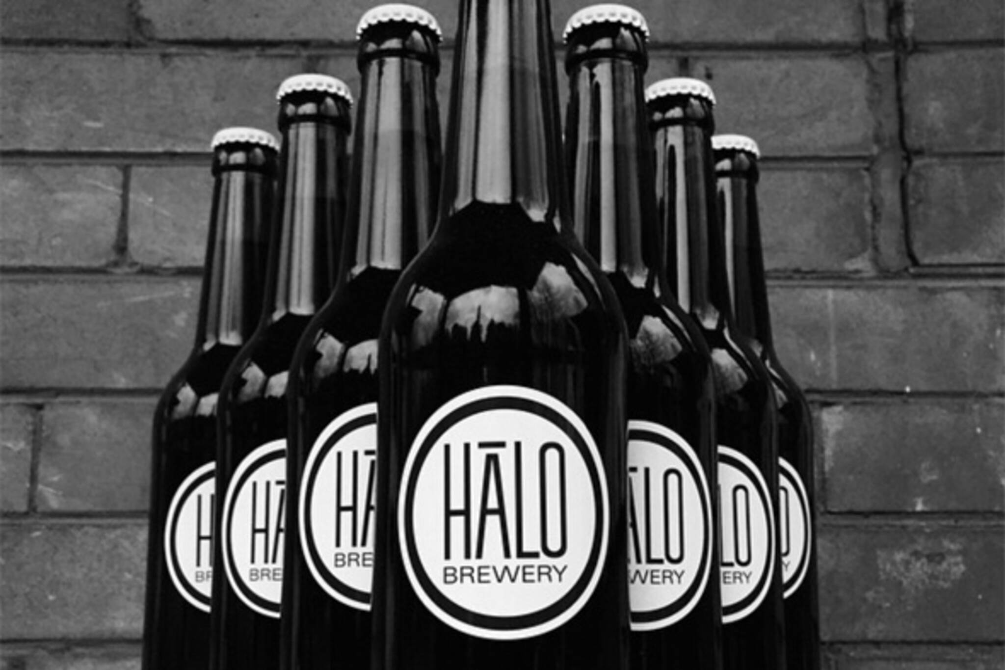 halo brewery