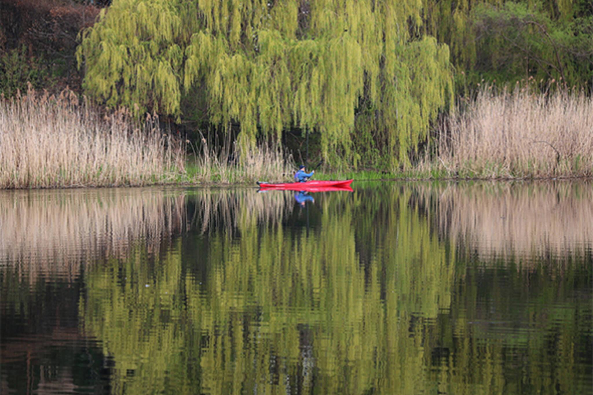 kayaking toronto