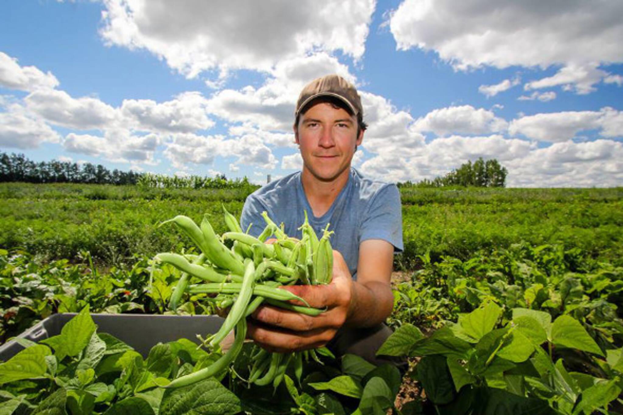 organic farms toronto