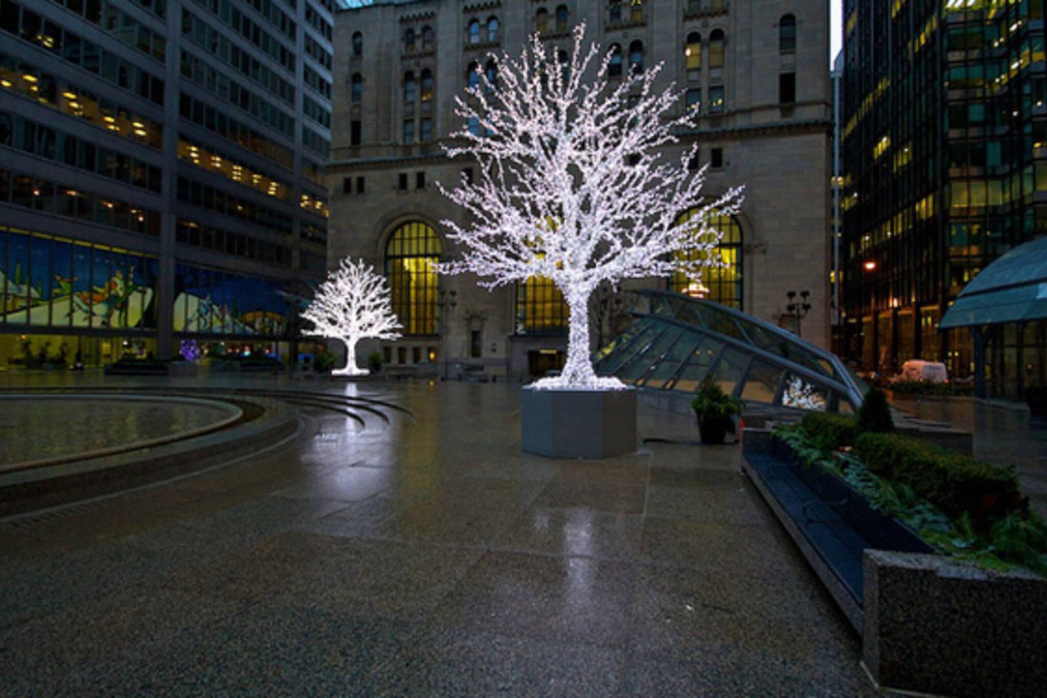 Christmas Tree Toronto