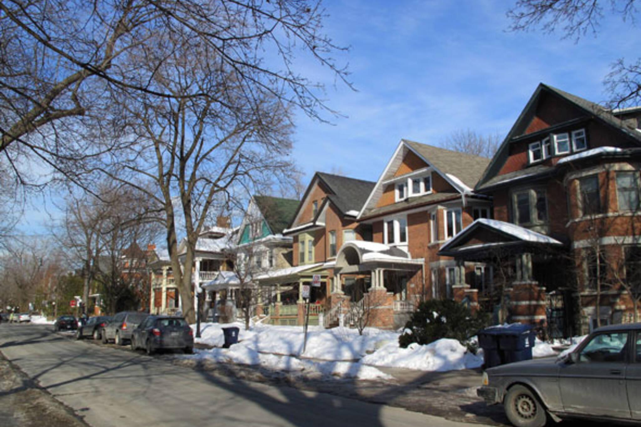 Habitats: Palmerston Boulevard