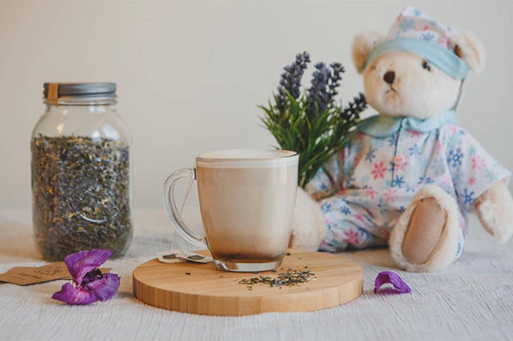 teddy bear cafe