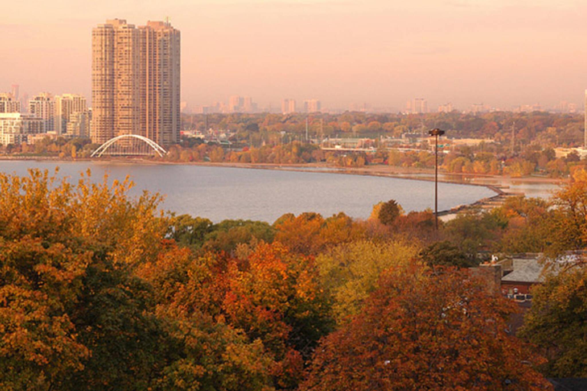 Fall Colours Toronto Photos