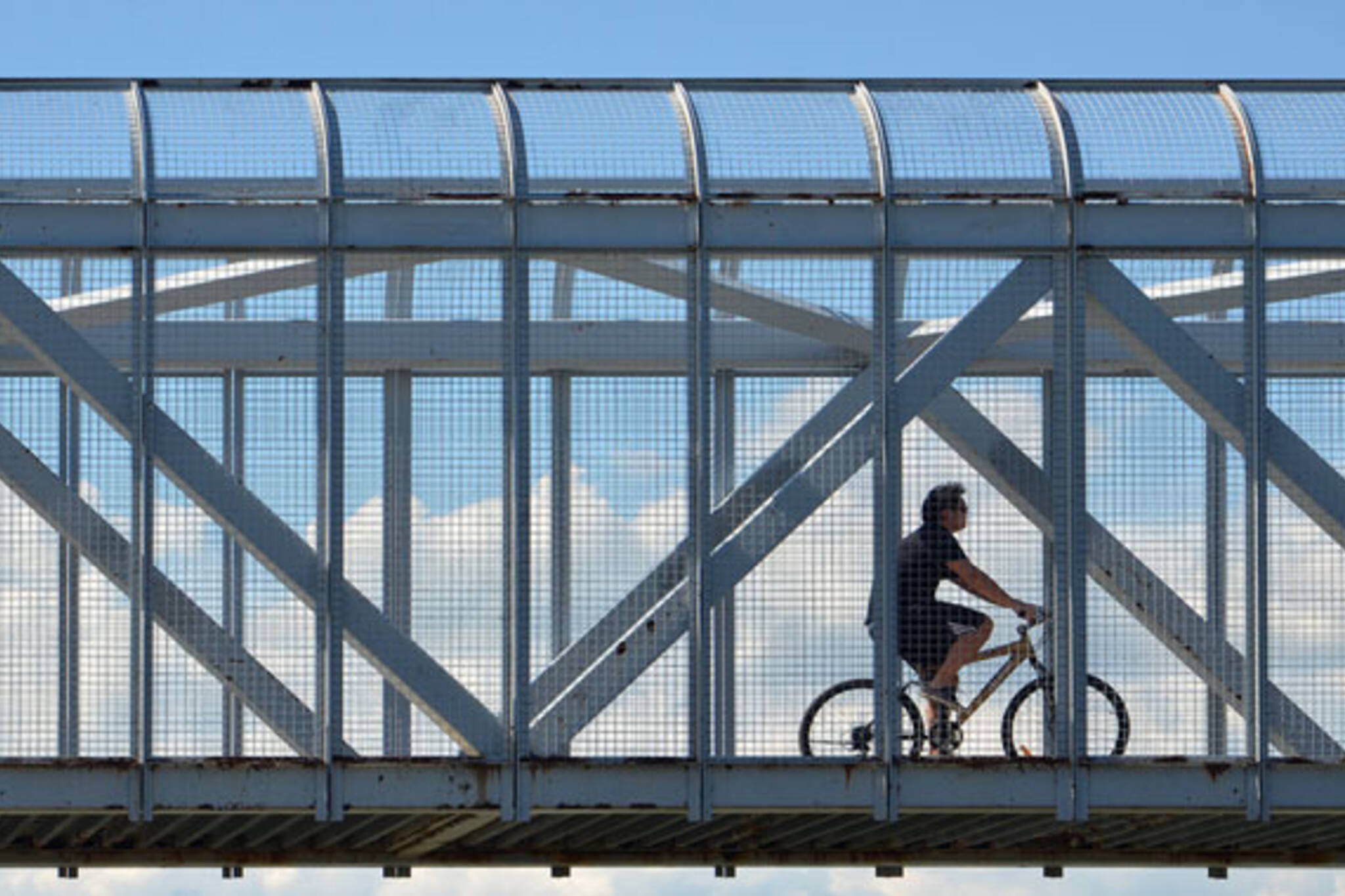 toronto bike bridge