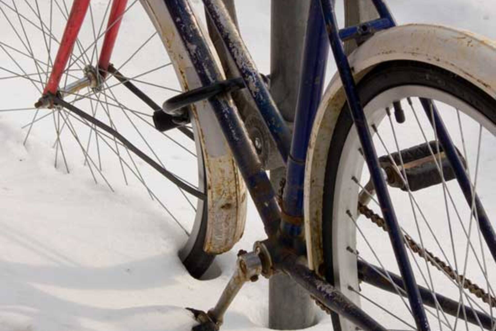 Bicycle and Snow I by andyscamera