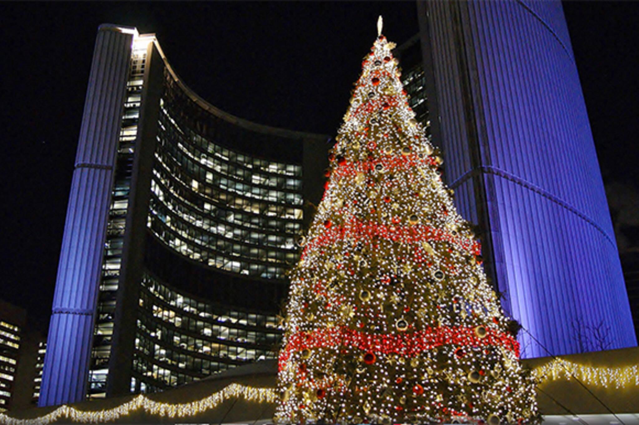 city hall christmas tree toronto