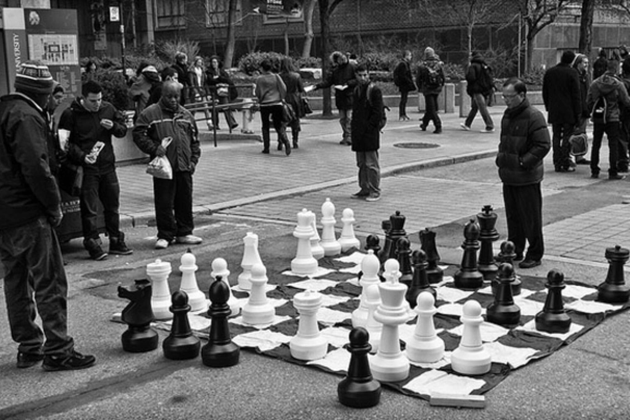 Big Chess Game