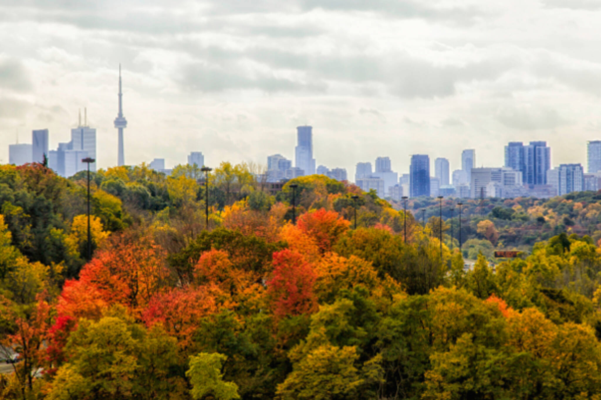 fall weather toronto