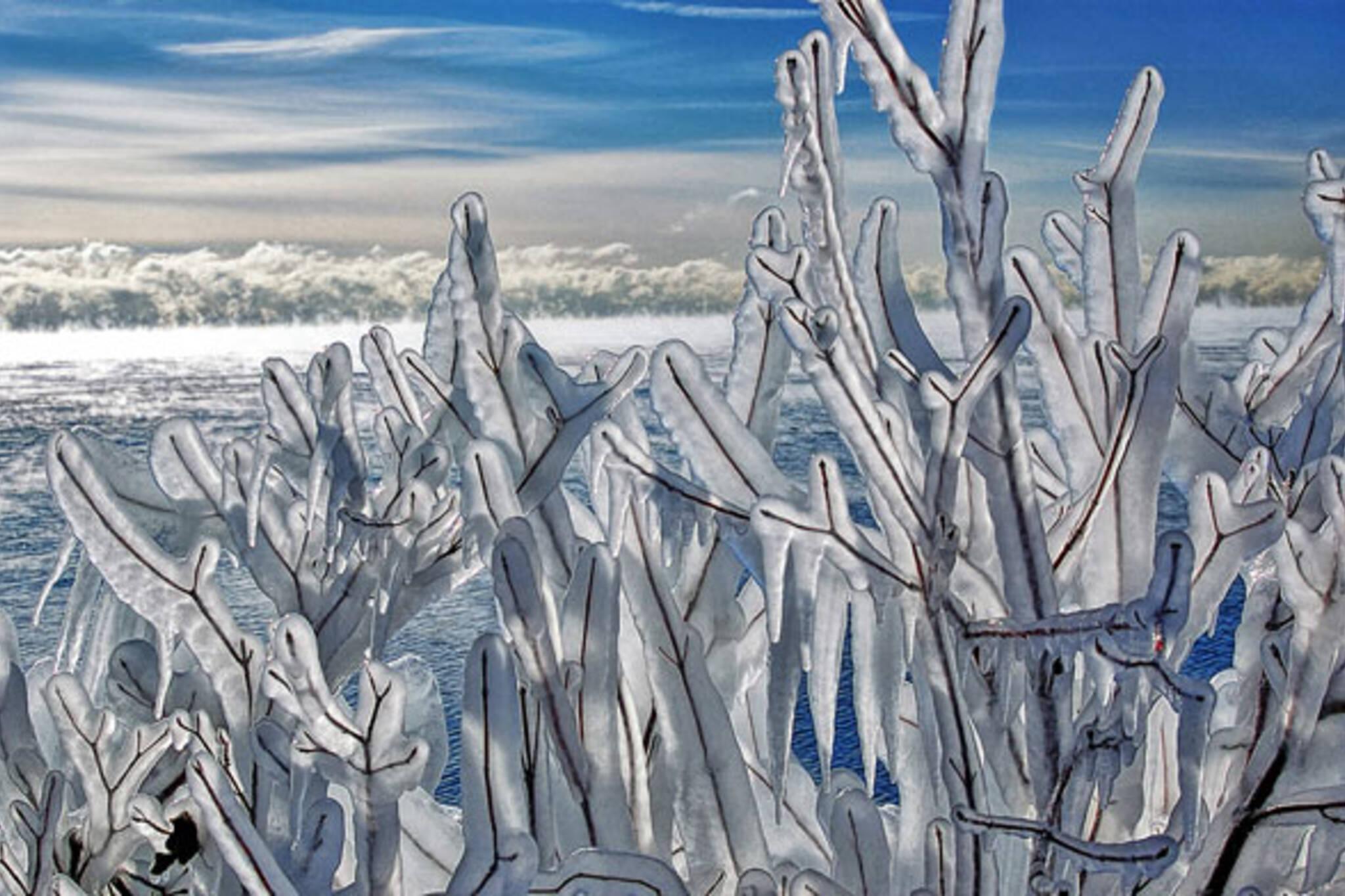 ice toronto