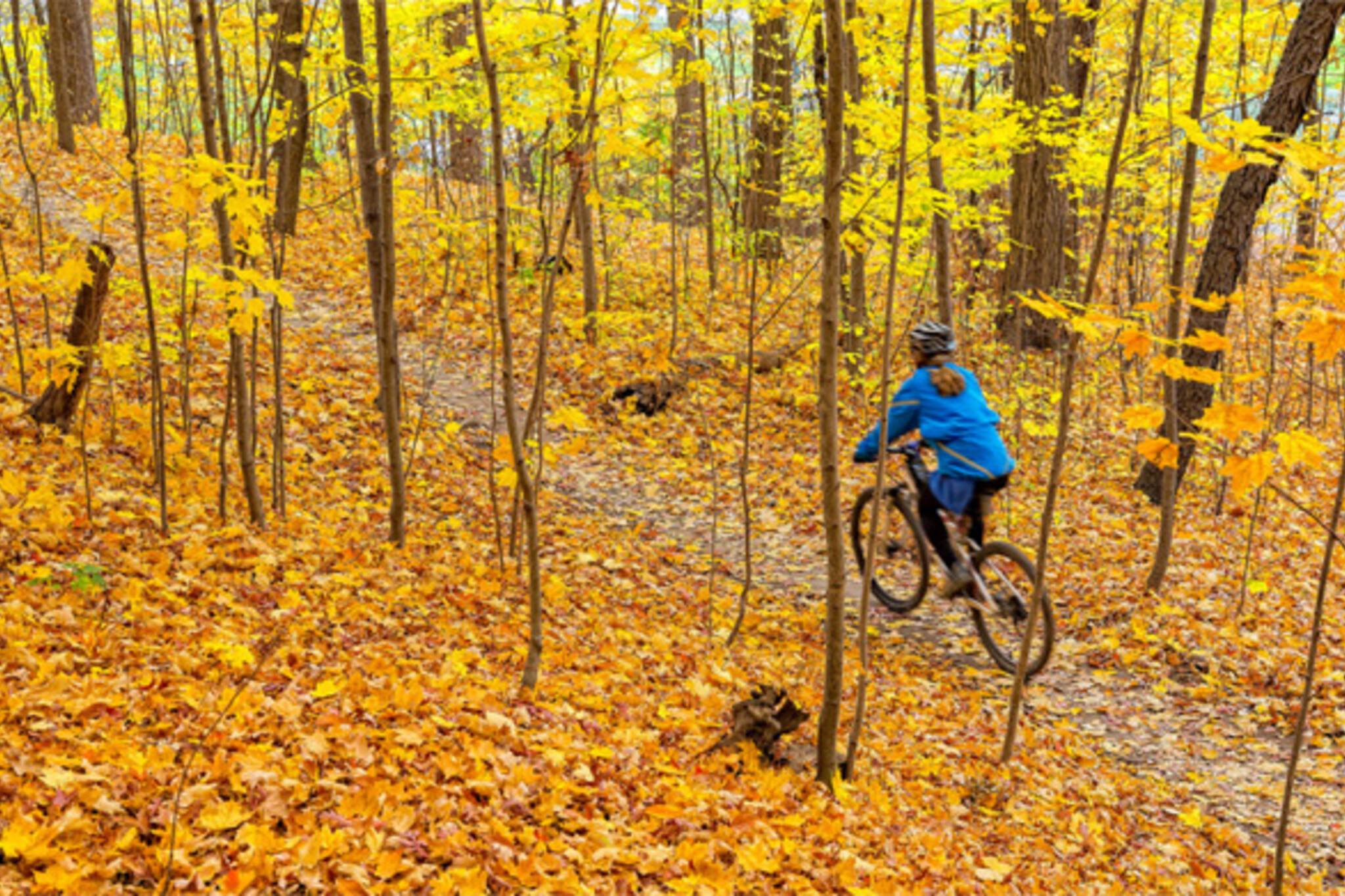 bike ride toronto
