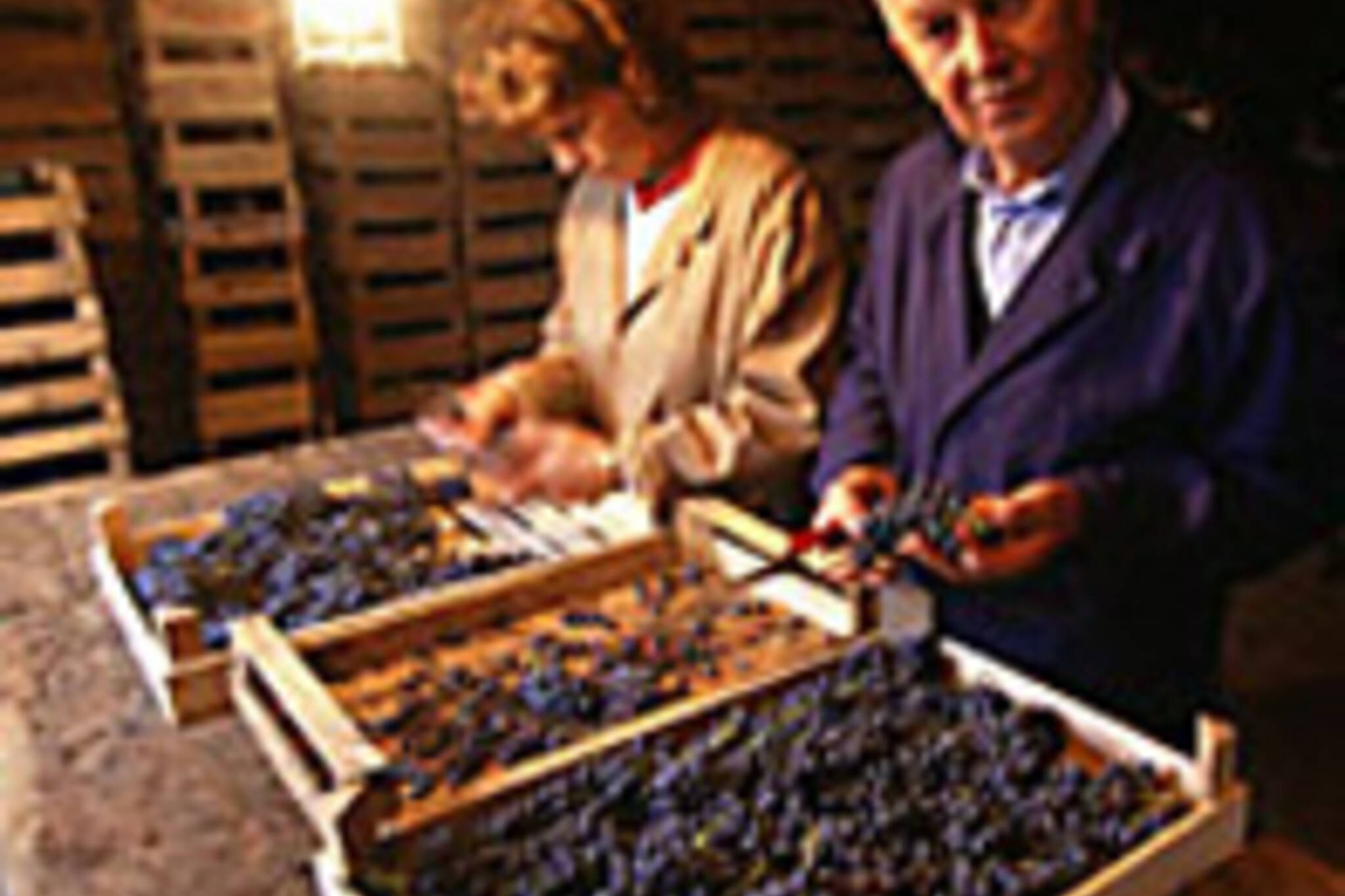 Guiseppe Quintarelli (right) making his magic. (Image from www.winephotos.com)