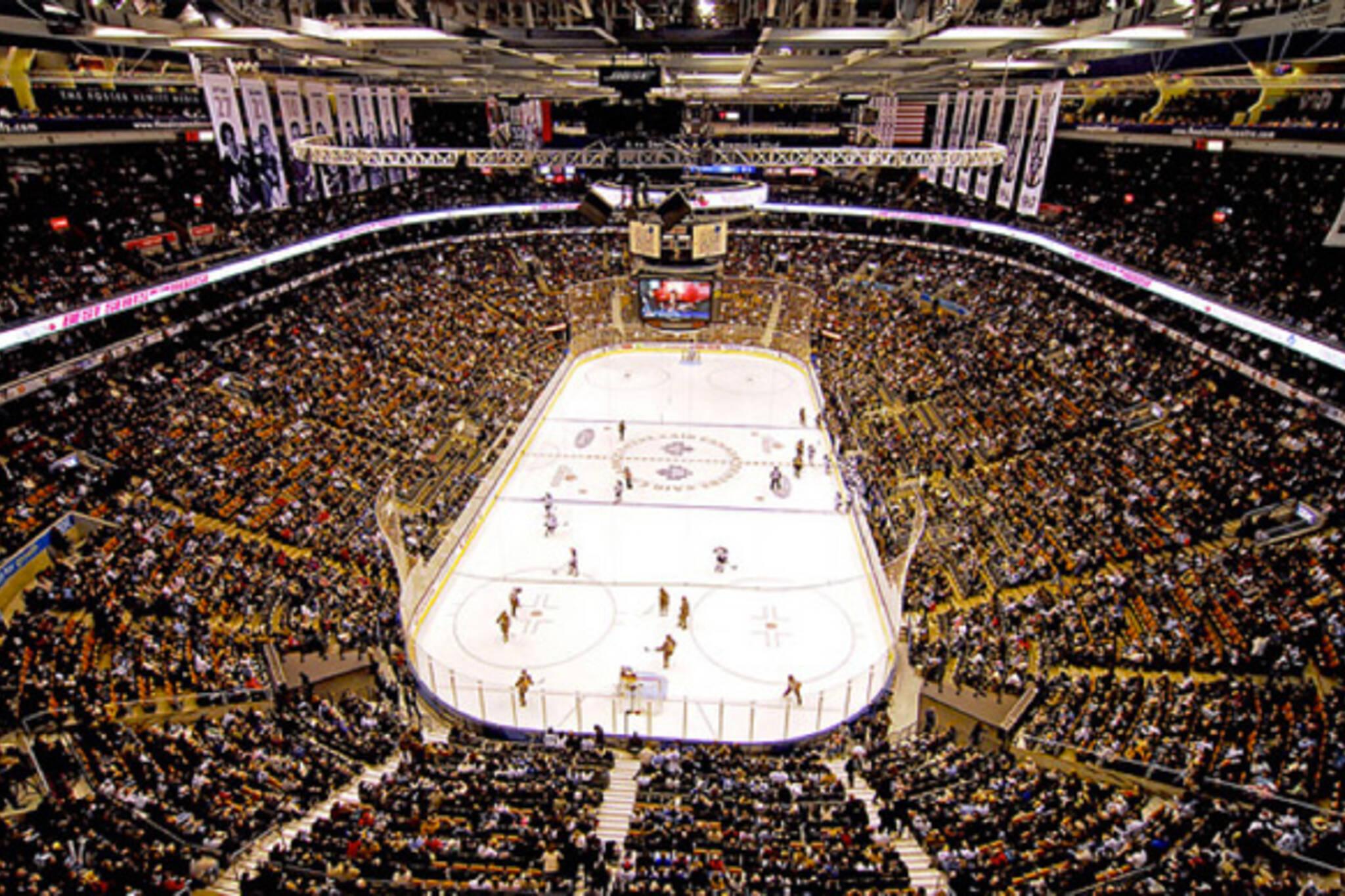 Own Toronto Maple Leafs