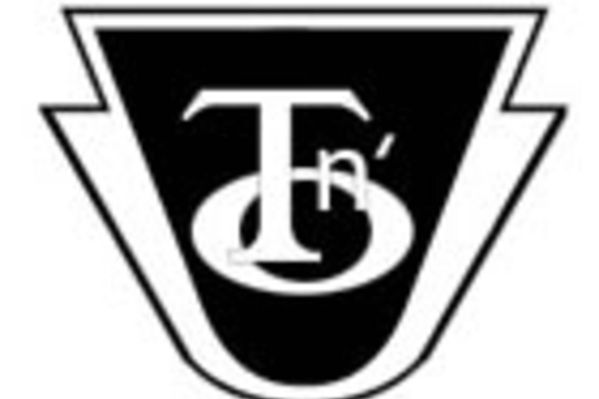 20061028_tno_logo.jpg