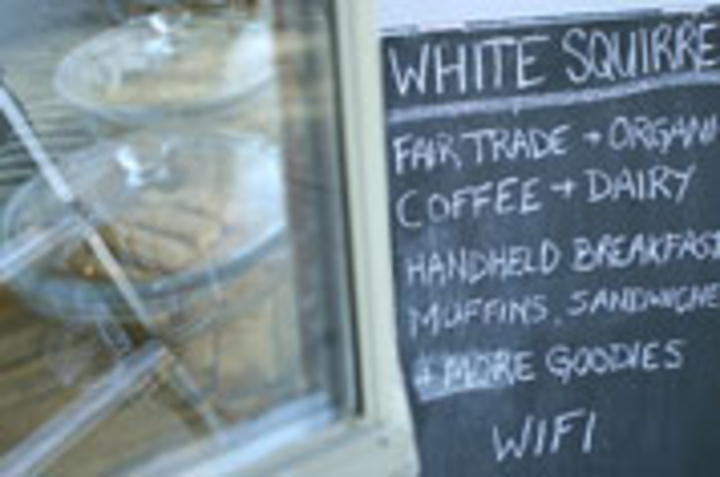 White Squirrel Coffee Shop