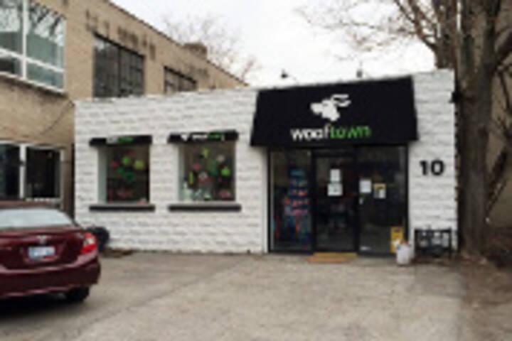 Wooftown