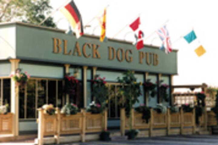 Black Dog Pub In Scarborough