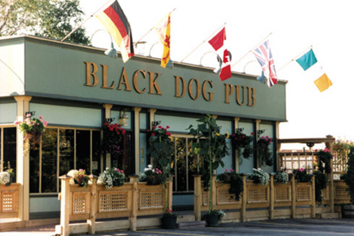 Black Dog Pub Toronto