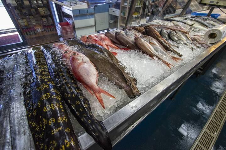 Newport Fish Importers on Alliance