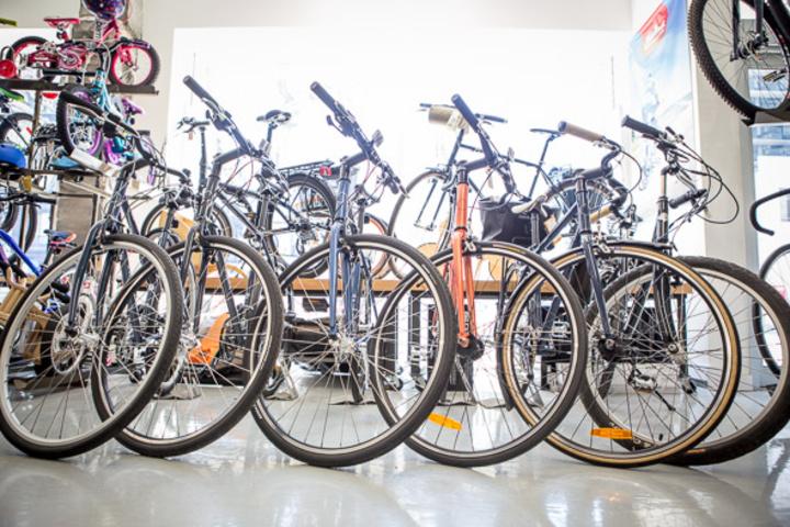 Urbane Cyclist (College St.)
