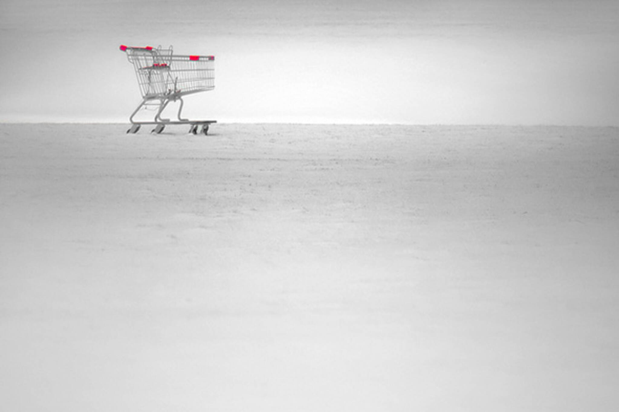 snow shopping cart