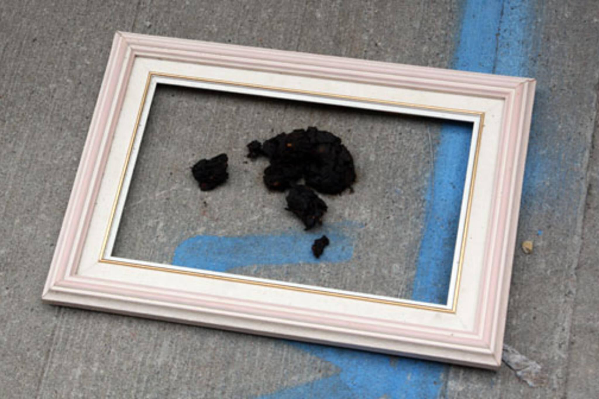 Framed Dog Excrement