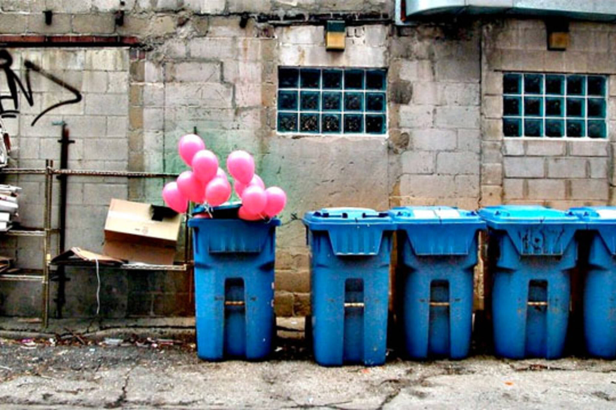 blue bins toronto