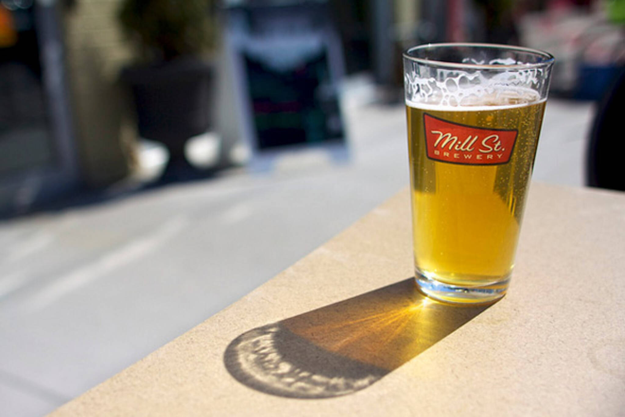 Toronto Beer Festivals