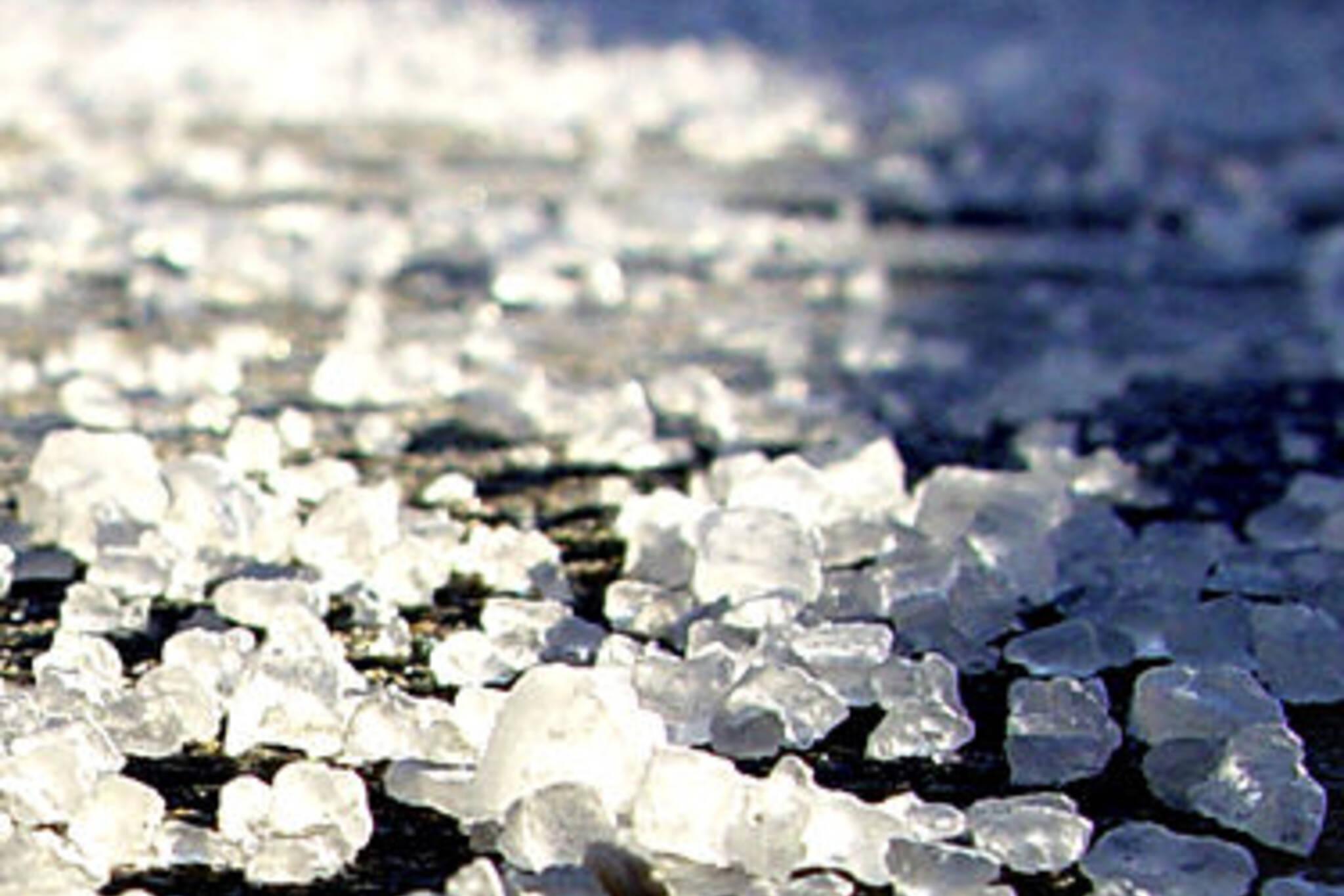 salt ban.jpg