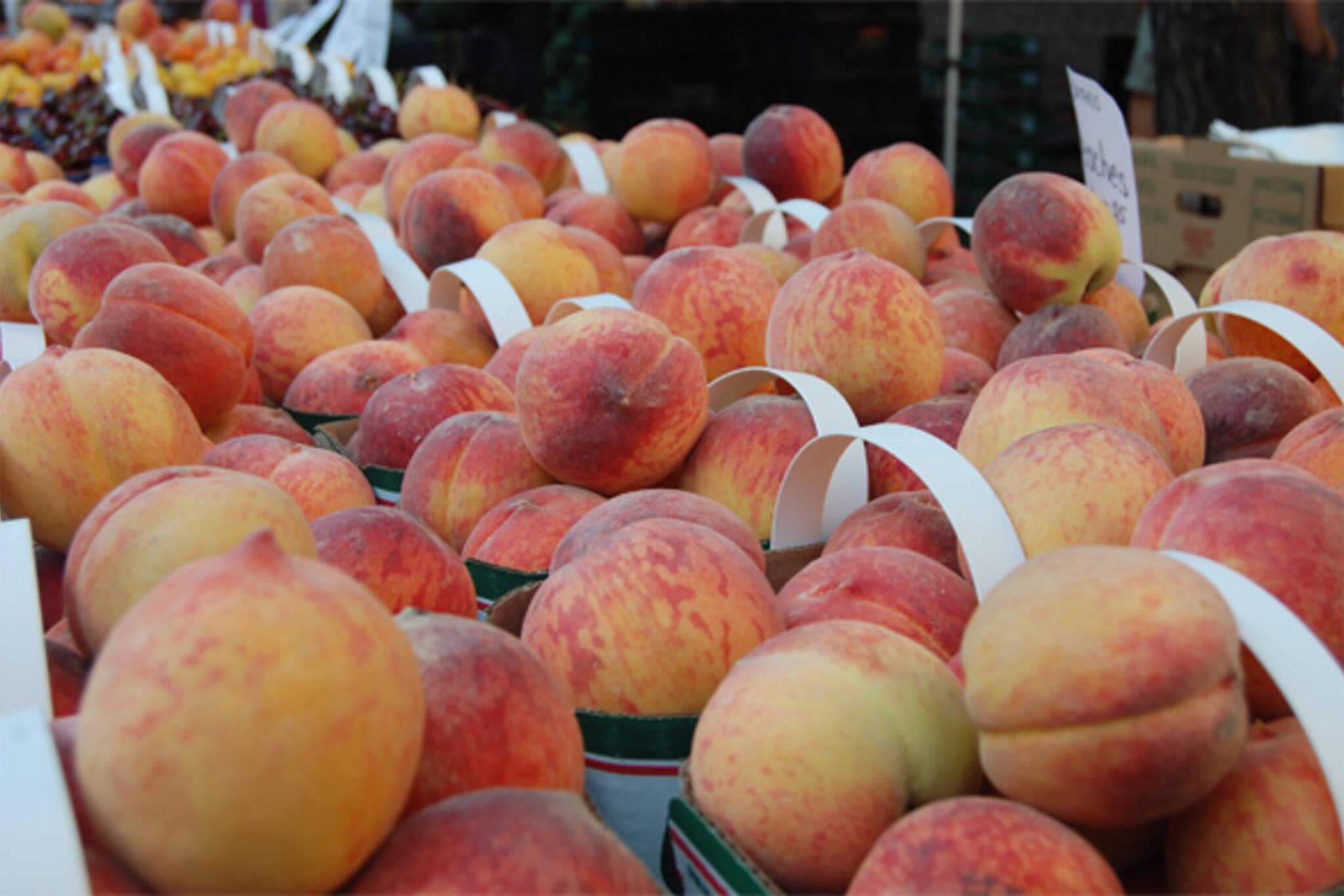 20090801---Peaches.jpg