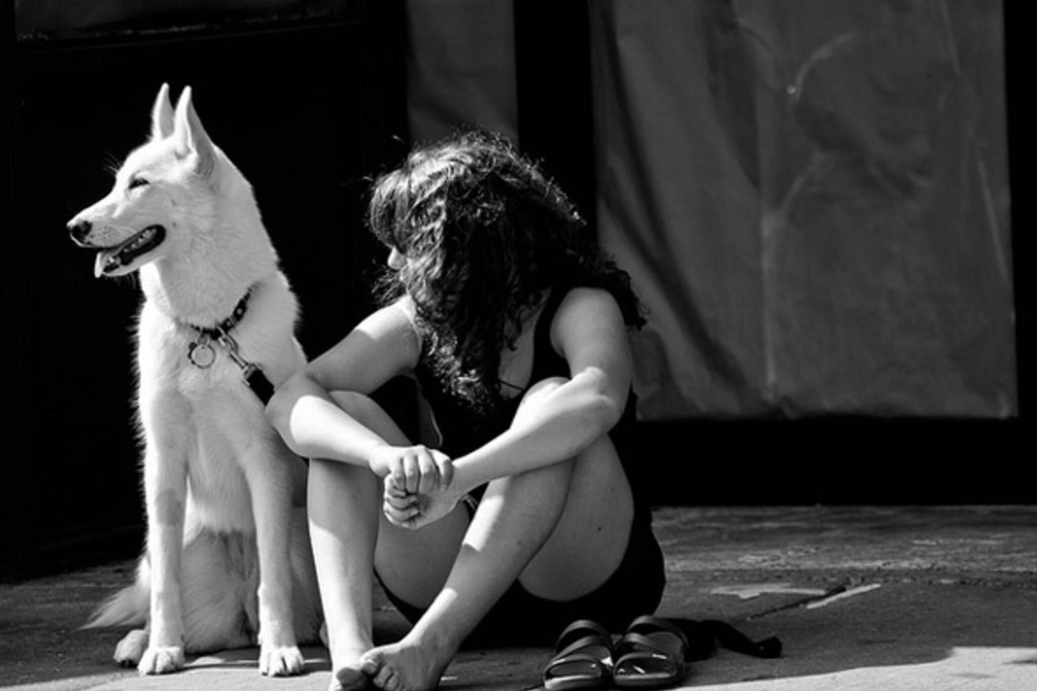 sit, dog, girl