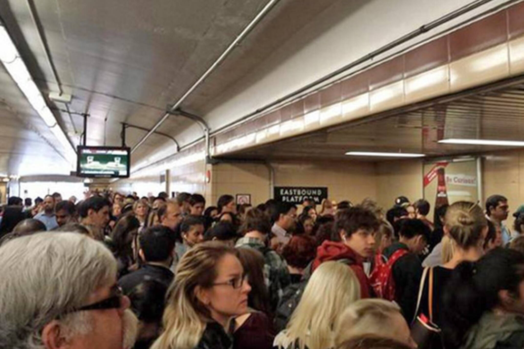 TTC shut down