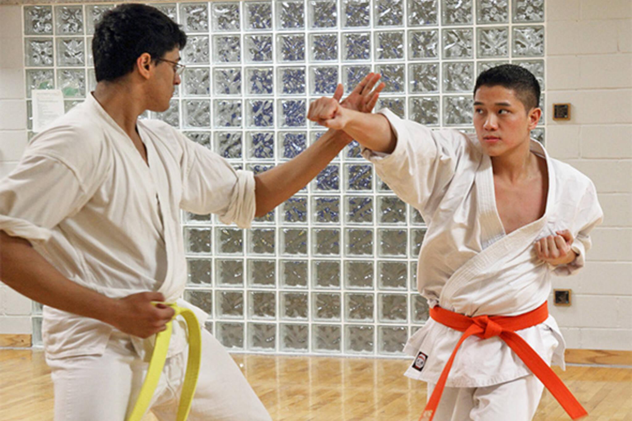 karate in toronto