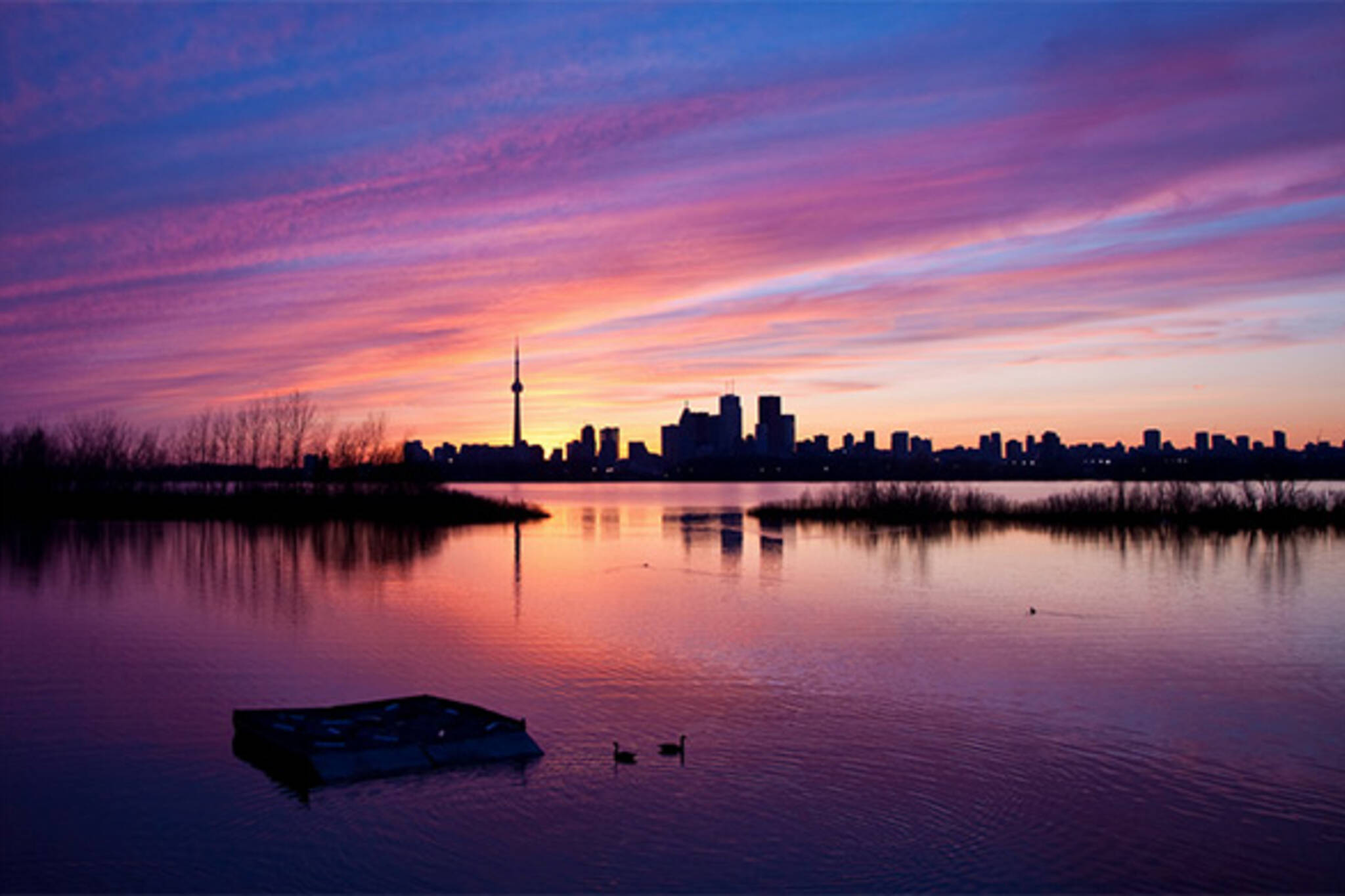 peaceful toronto