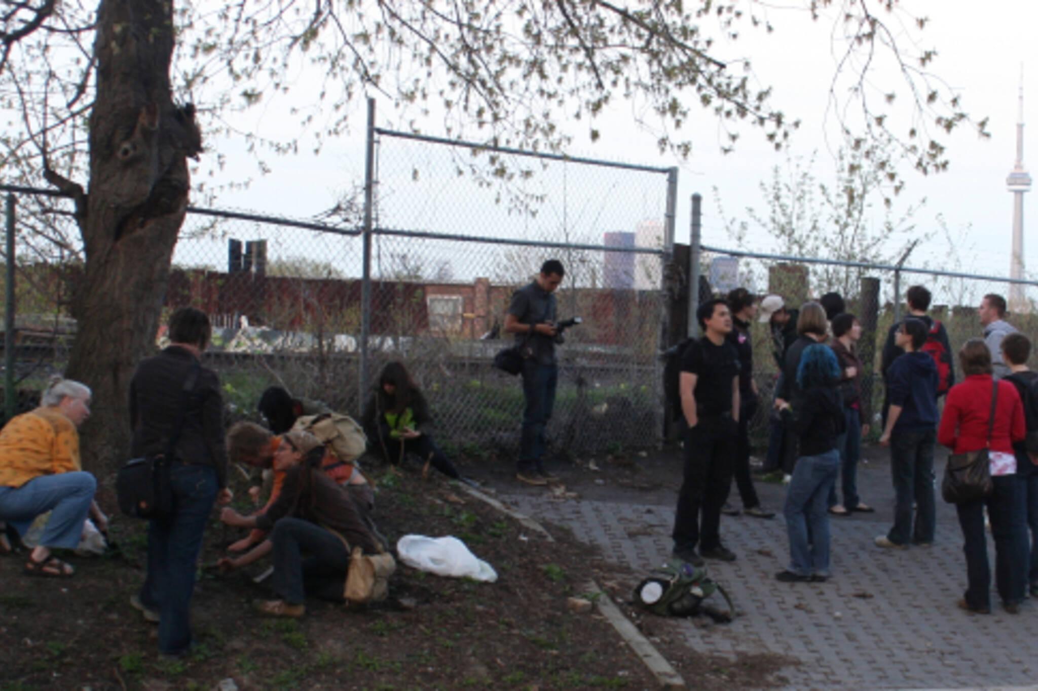 Toronto Public Space Committee Guerrilla Gardeners