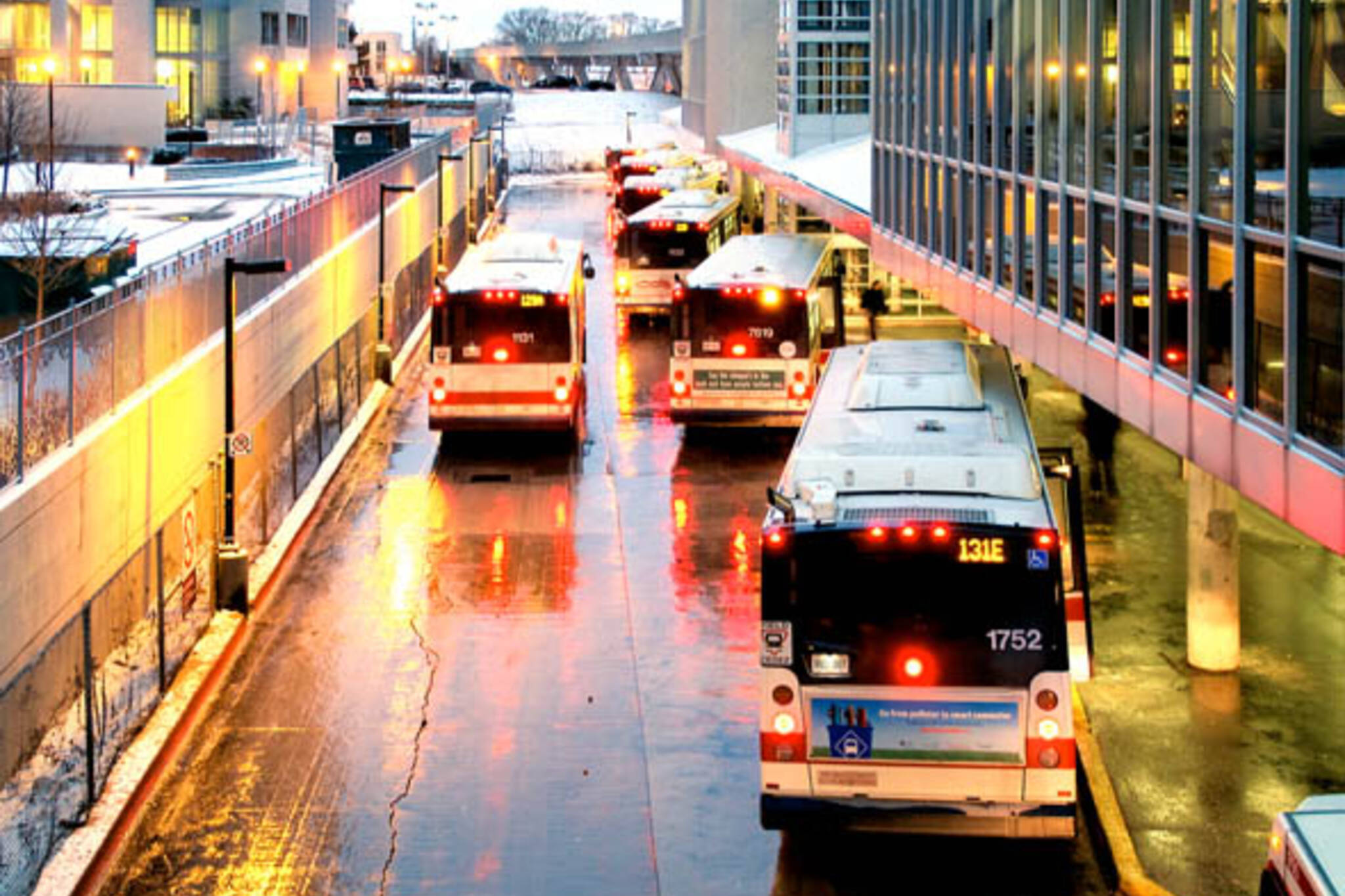 ttc buses scarborough