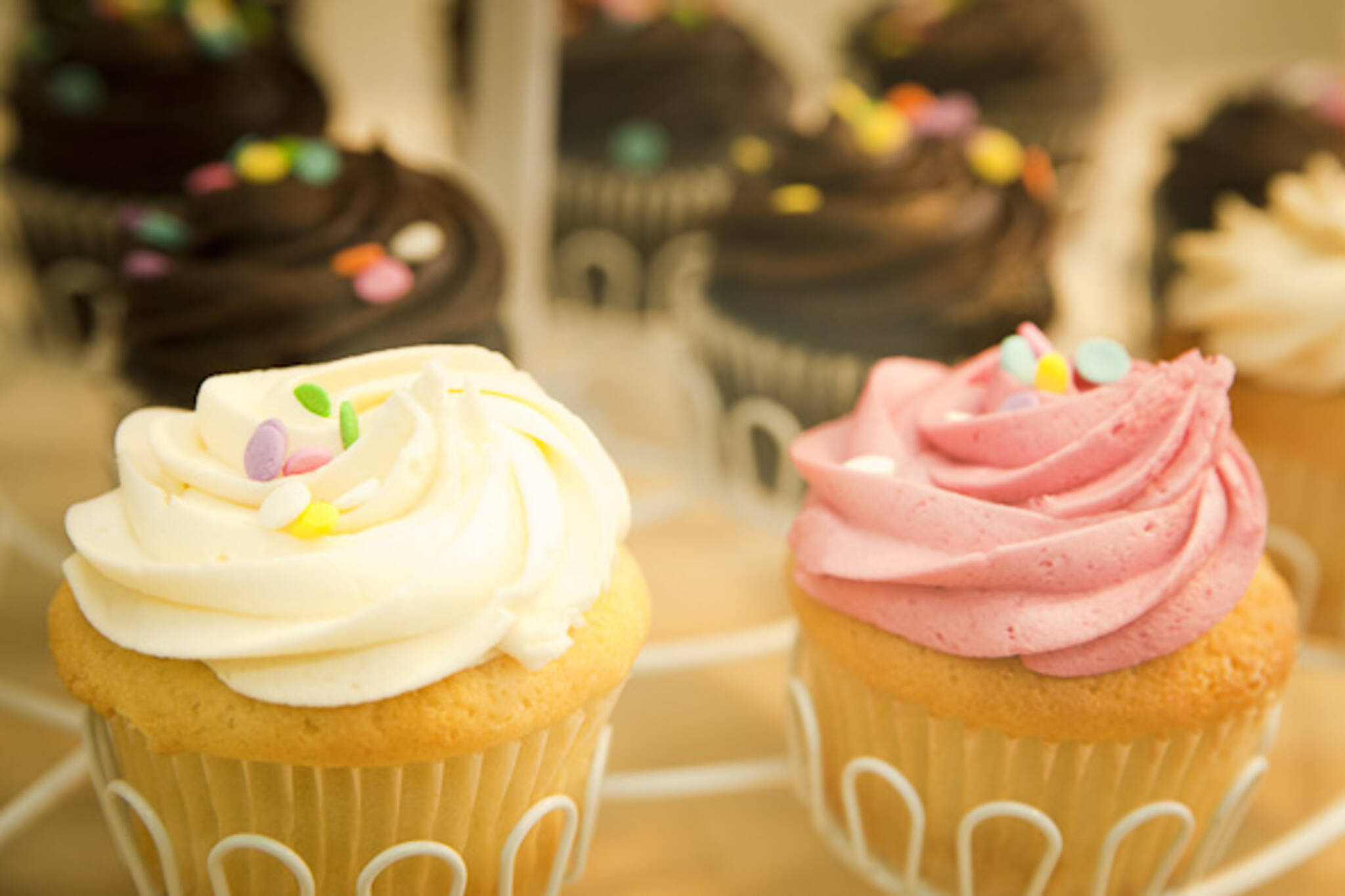 Cupcakes Etobicoke