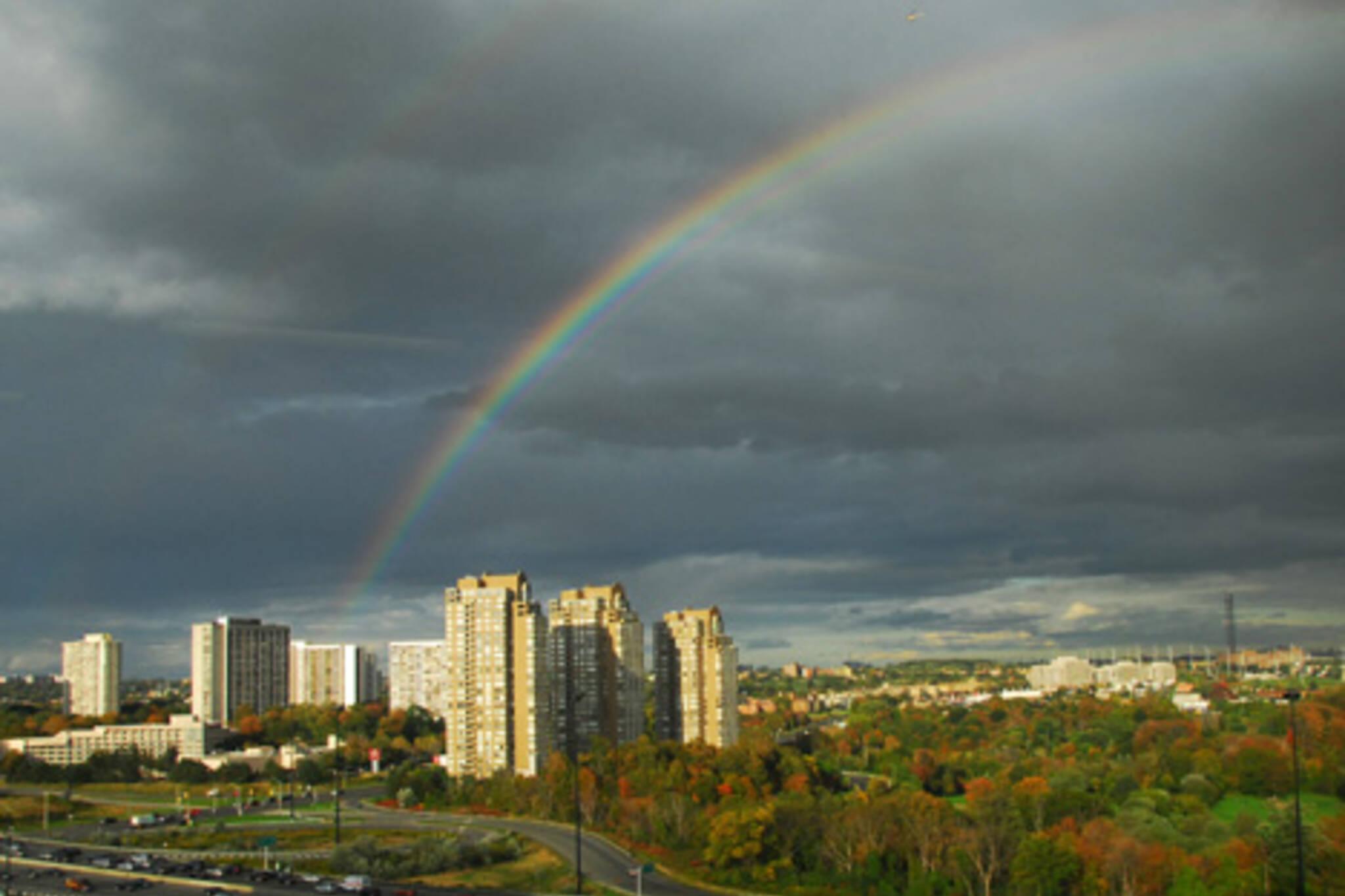20061005_rainbow_dvp.jpg