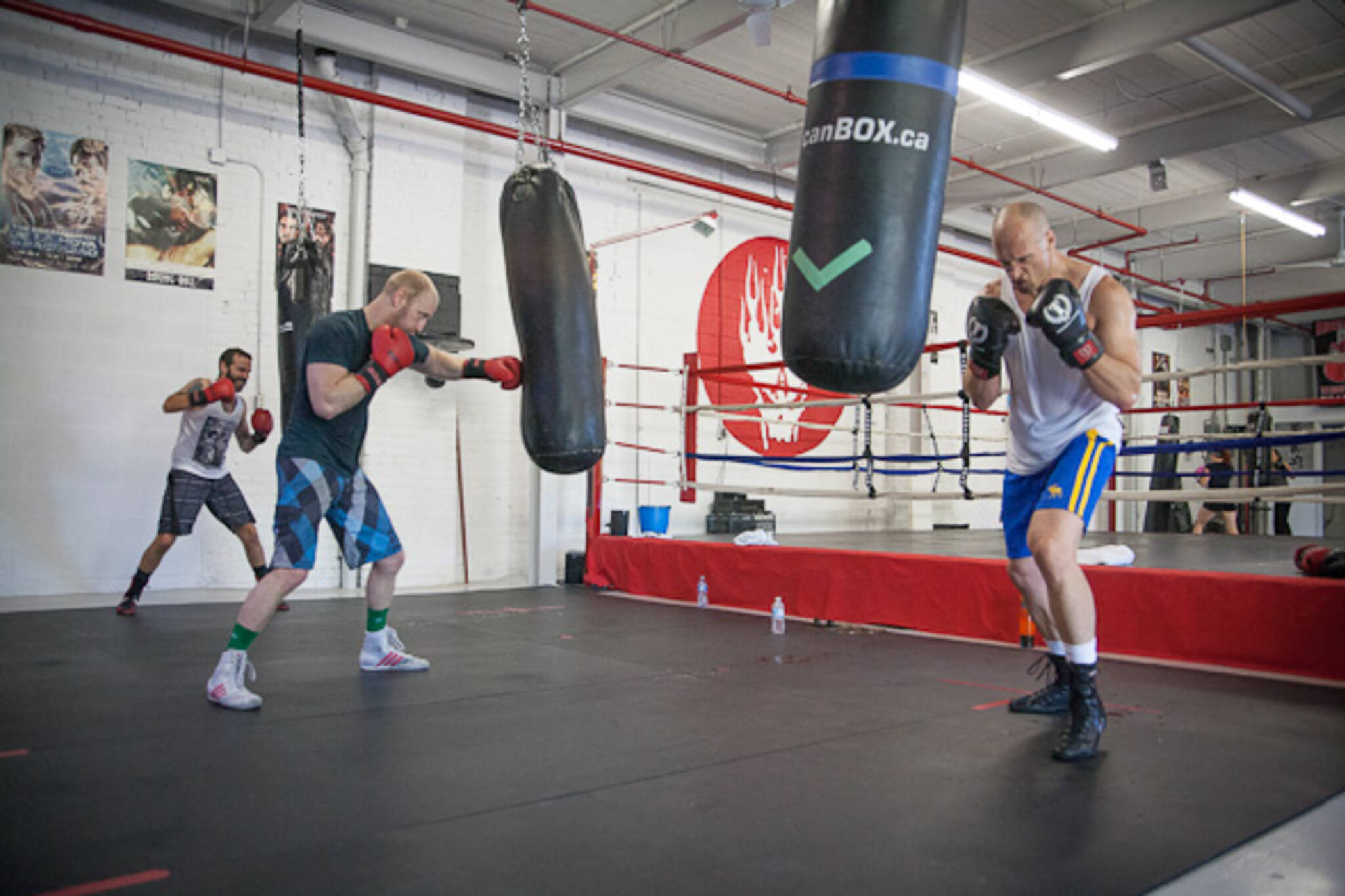 leslieville boxing club