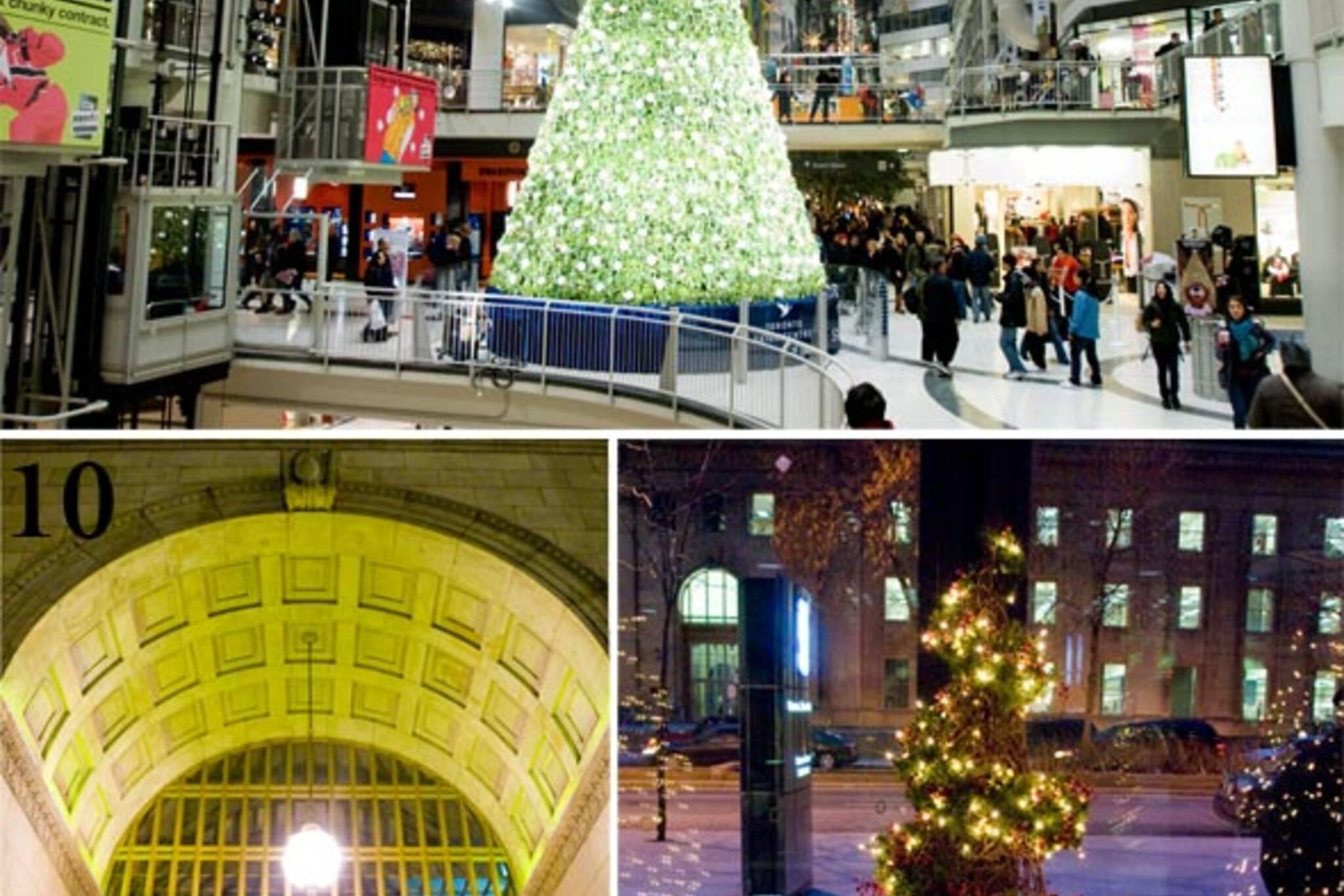 Christmas Trees Toronto