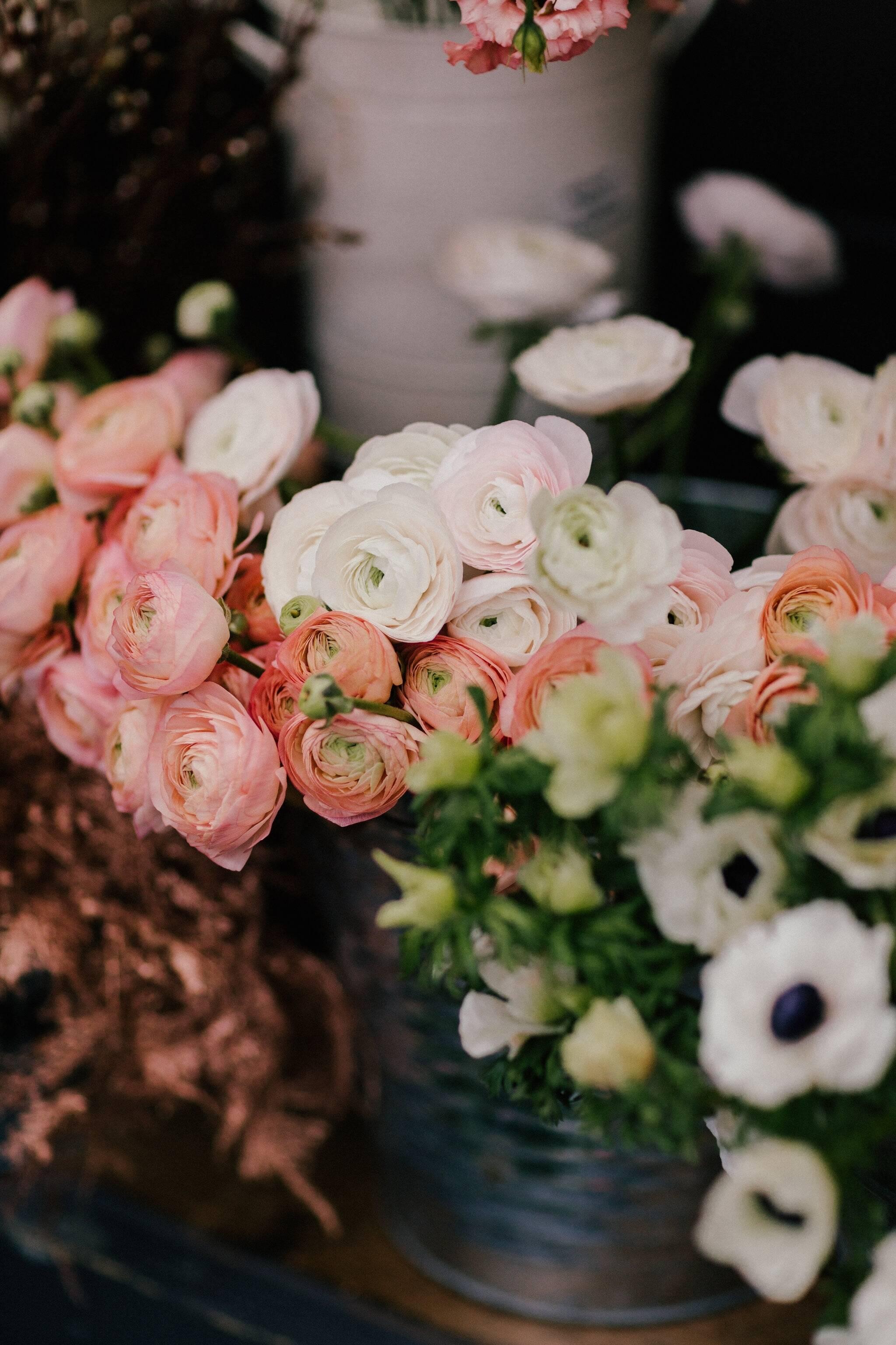 Toronto flower market valentines day pop up izmirmasajfo