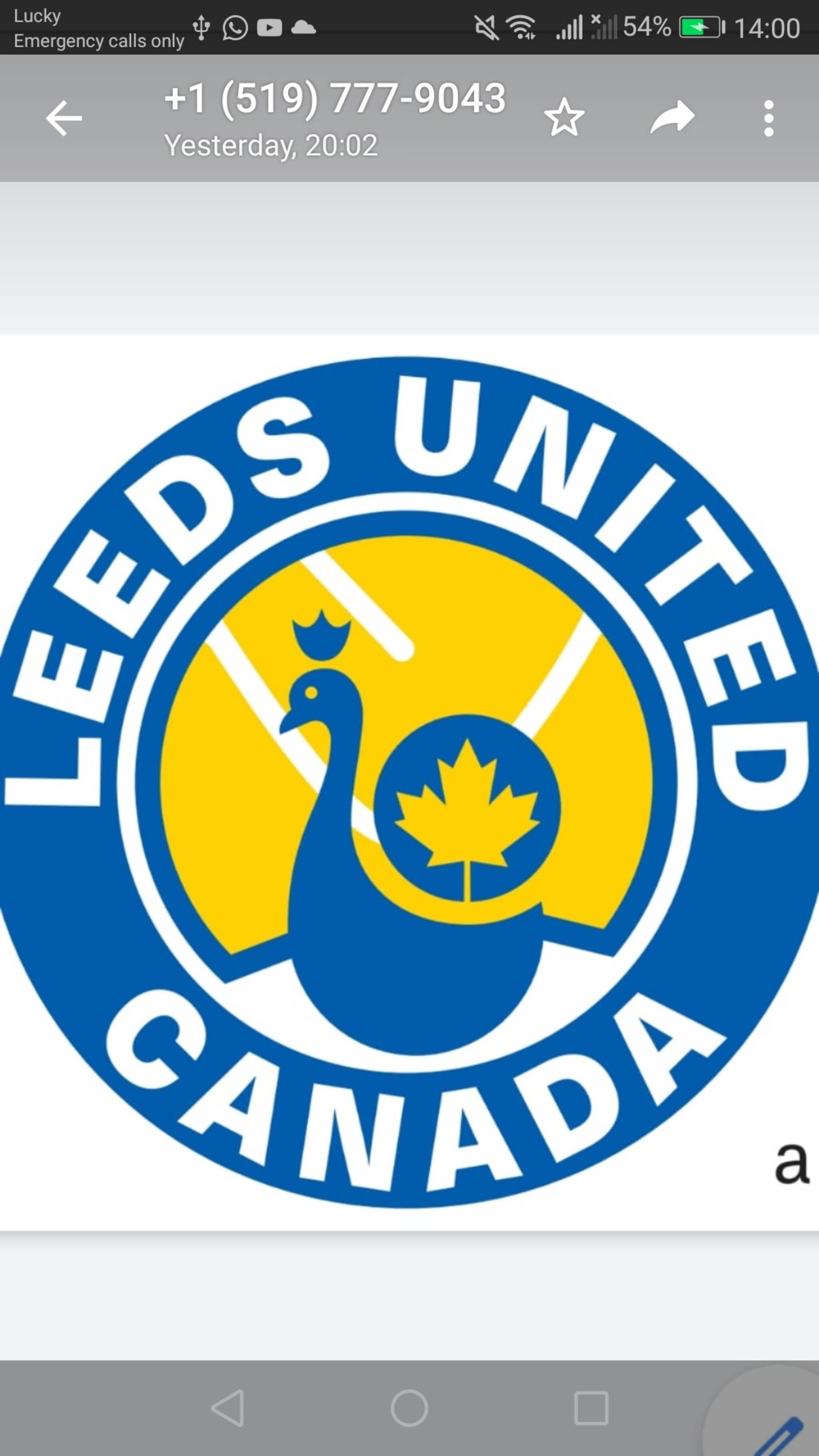 leeds united vs fulham - photo #25