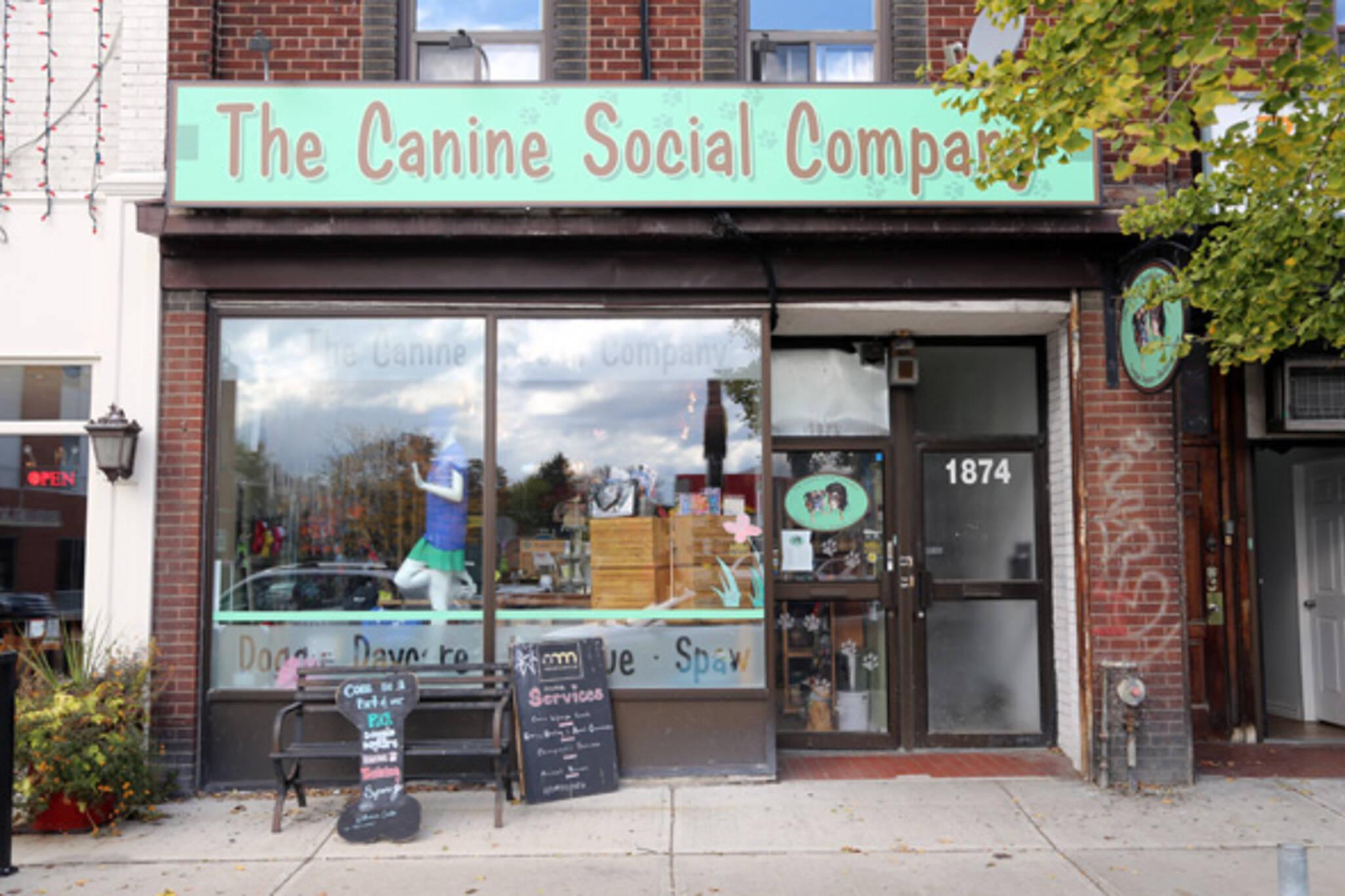 Canine Social Company