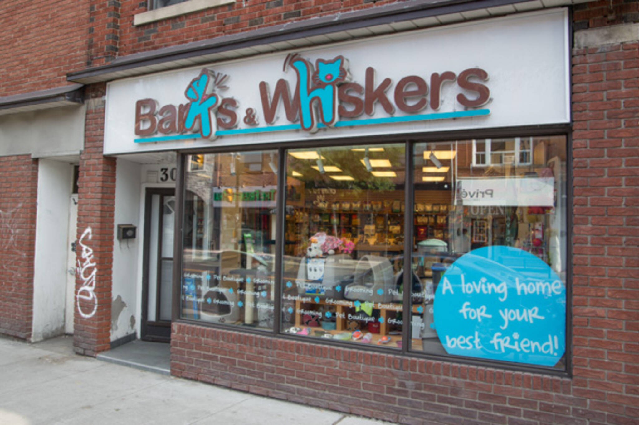 Barks and Whiskers Toronto