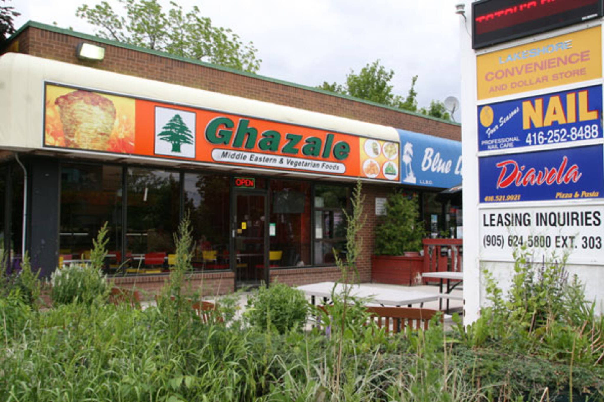 Ghazale Lake Shore Toronto