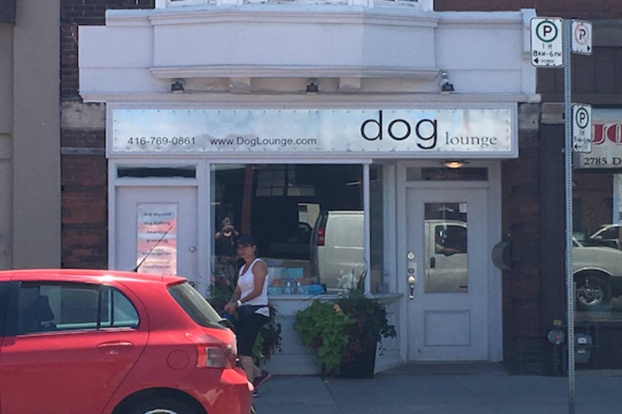 Dog Lounge Toronto