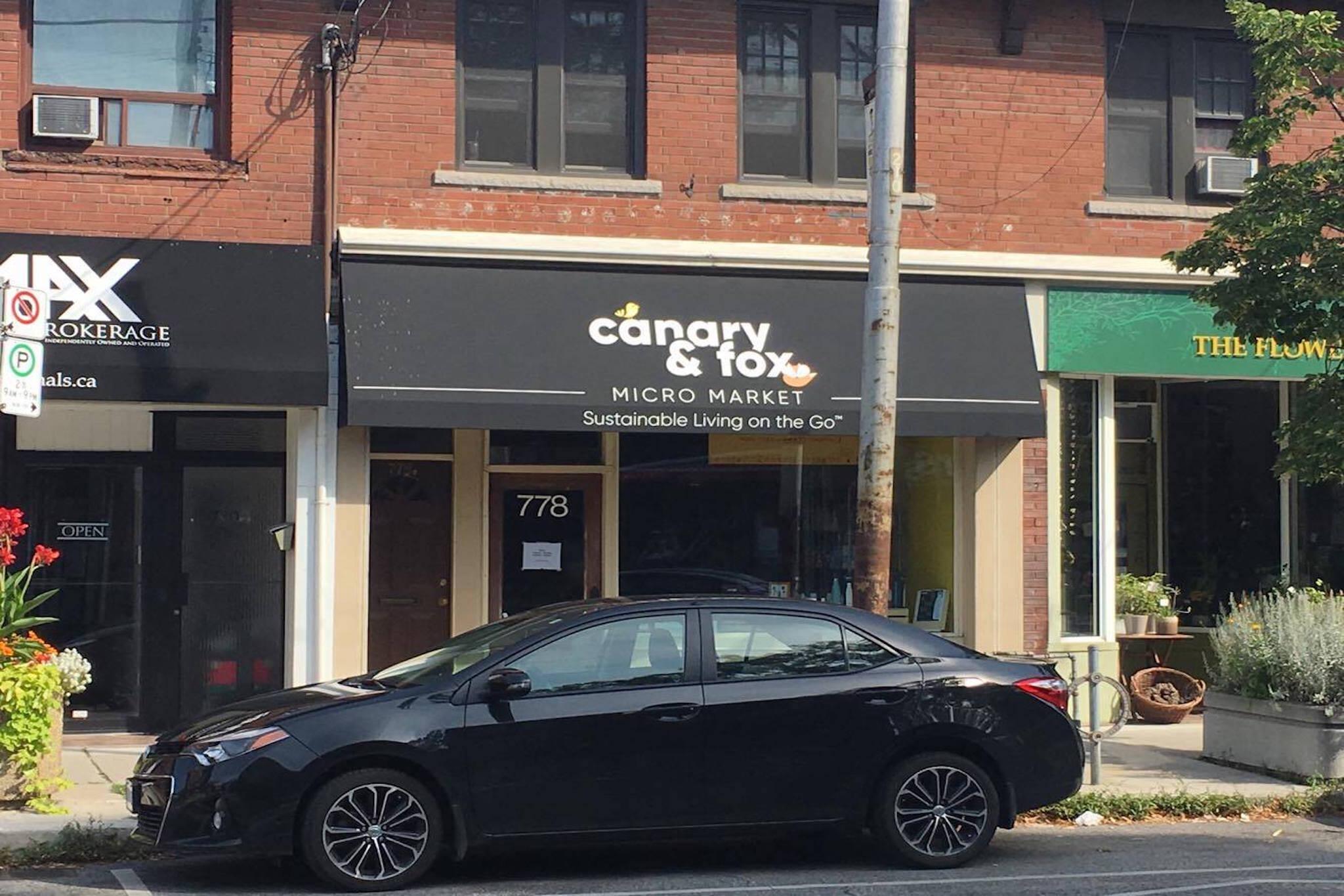 Canary Fox Toronto