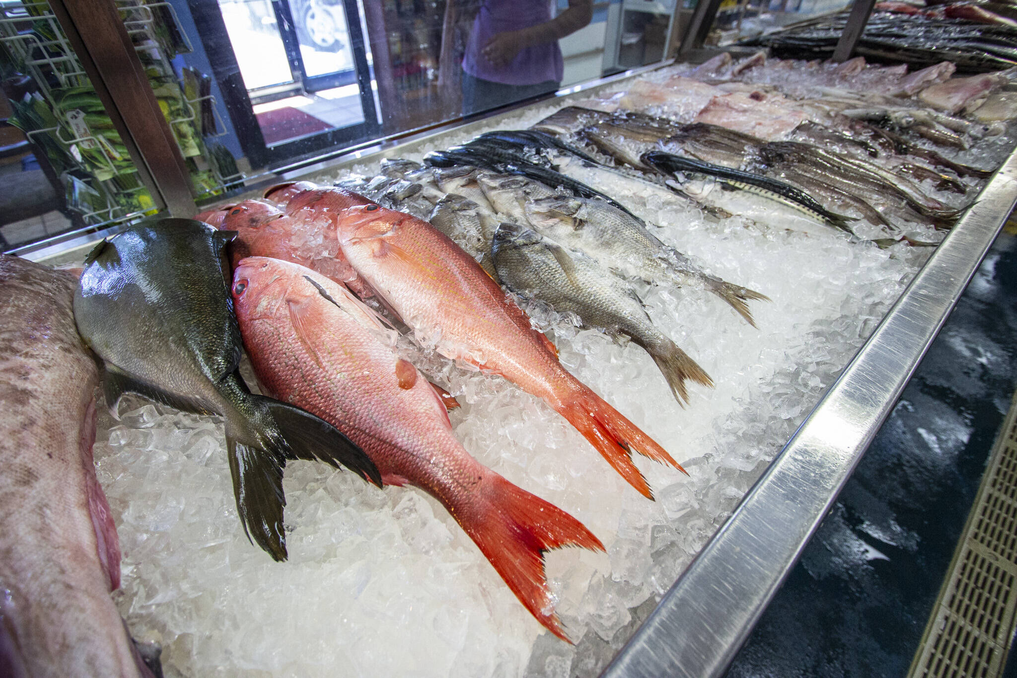 Newport Fish Toronto