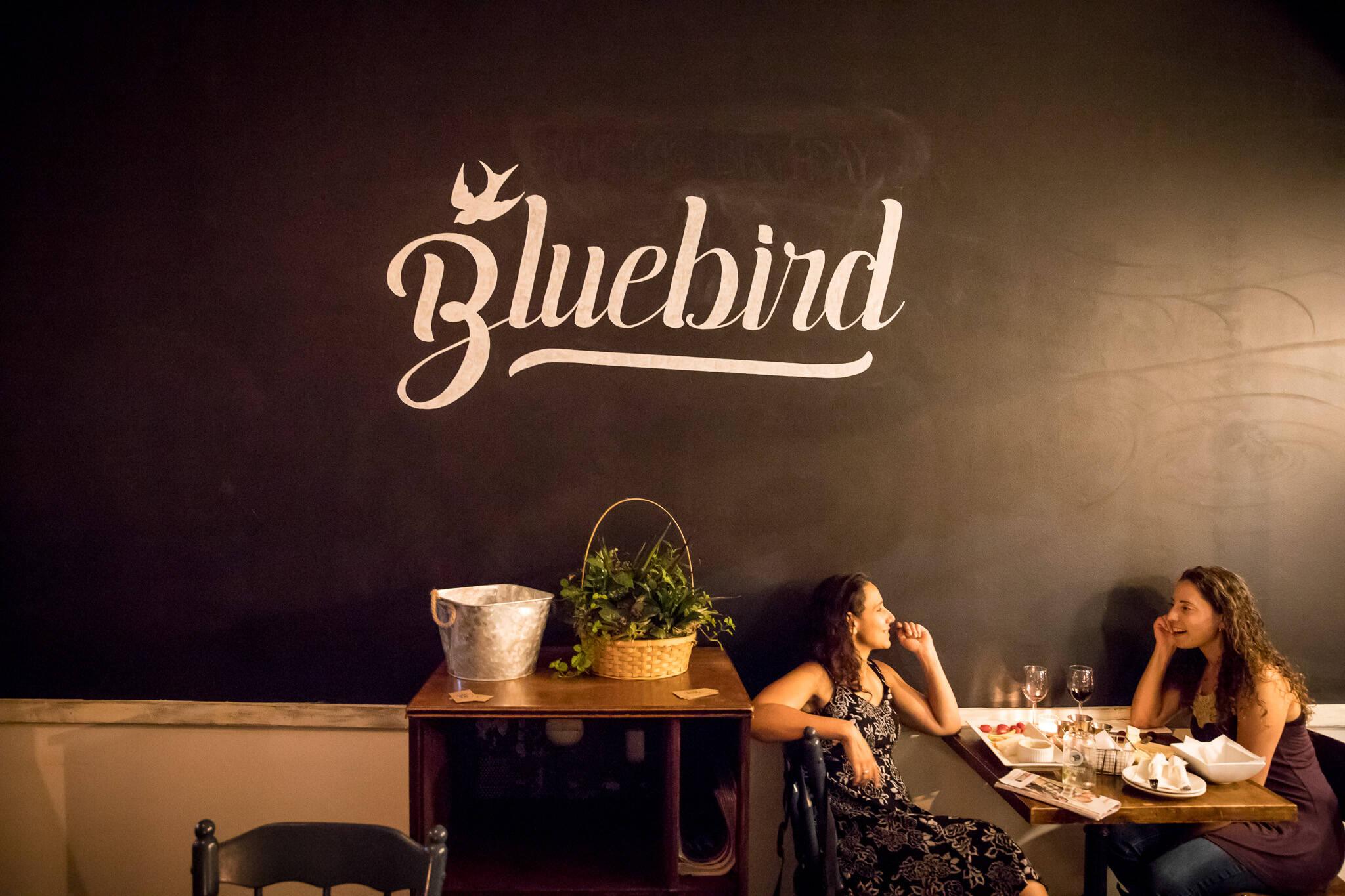 Bluebird Toronto