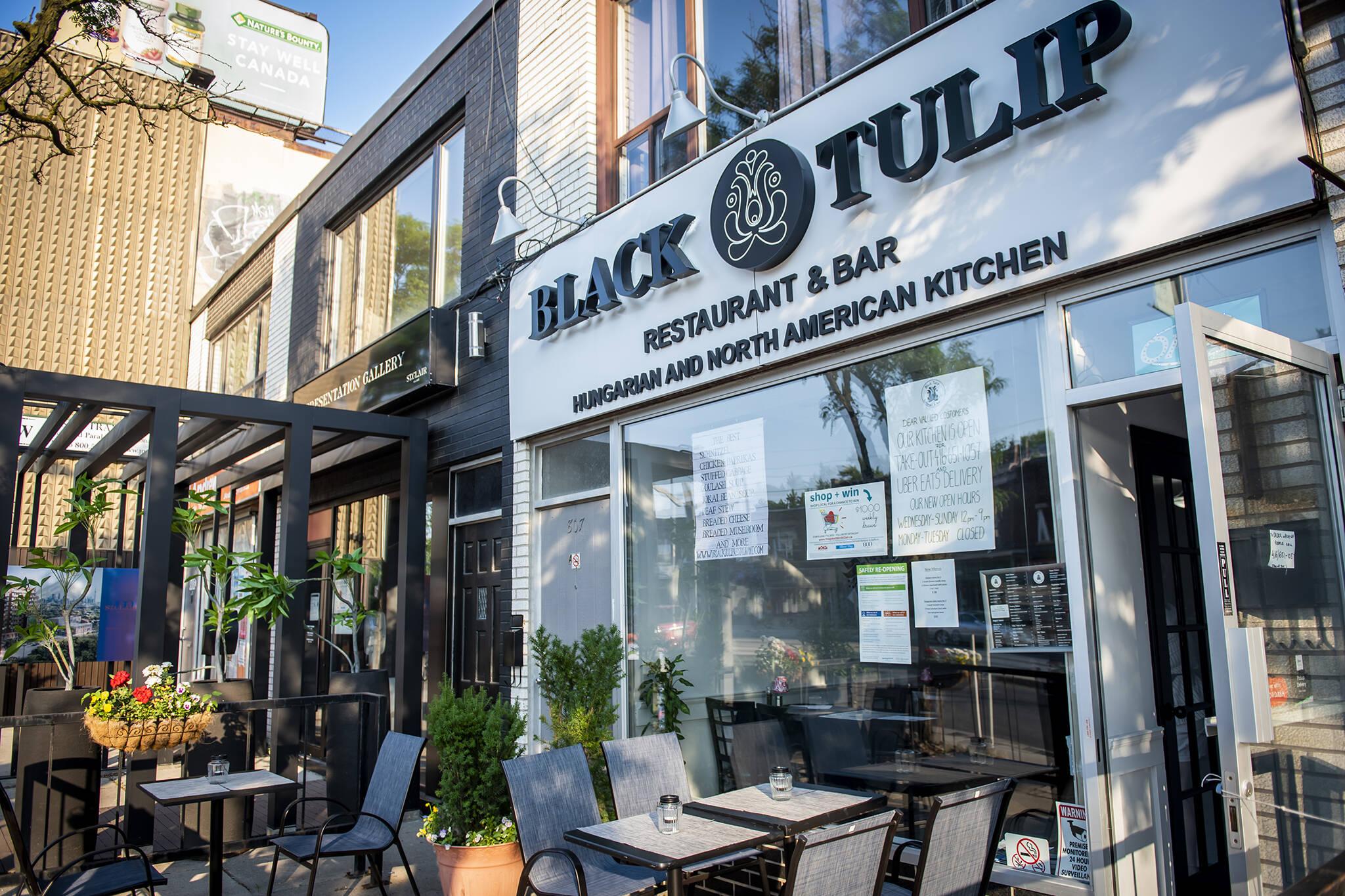Black Tulip Toronto